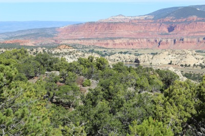 Properties boulder mountain realty quite the view from this 19 acre lot on the north slope of boulder mountain fantastic wide ranging colorful views of mountains and mesas beyond the green sciox Gallery